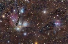 NGC 2170: небесный натюрморт.