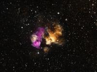 Стойкая звезда выжила после взрыва сверхновой