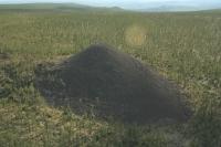 Ученые занялись раскрытием загадки так называемой «Долины смерти»