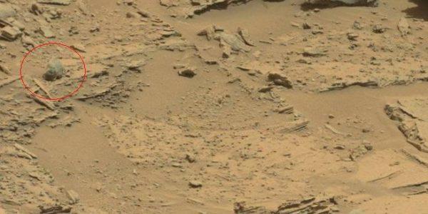 Череп на Марсе