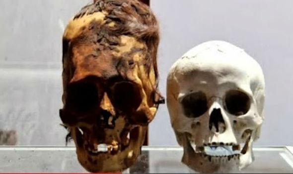 В Антарктиде обнаружены черепа предполагаемых инопланетян
