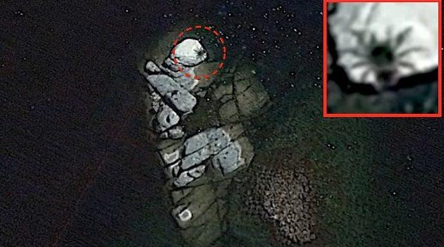 Пользователи Google Earth обнаружили гигантского паука у побережья Мексики