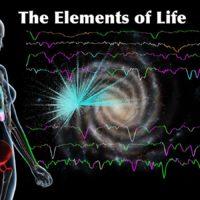 Элементы звезд и человека