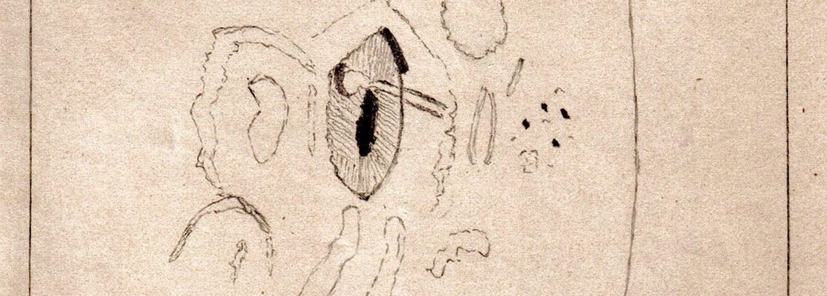 Подросток записал солнечную вспышку в 1886 году