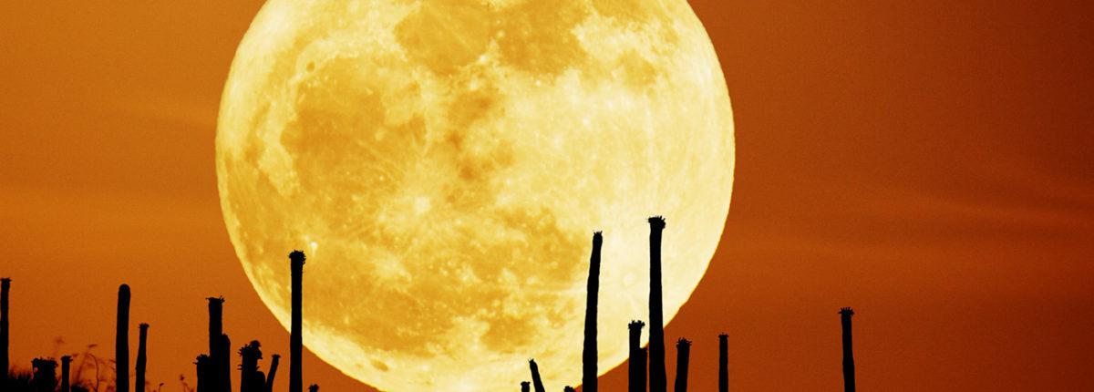 Что такое лунная иллюзия?