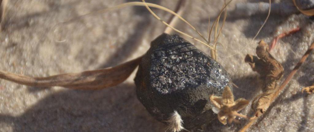 Астероидная угроза больше не страшна Земле: система ATLAS предупредит об опасности