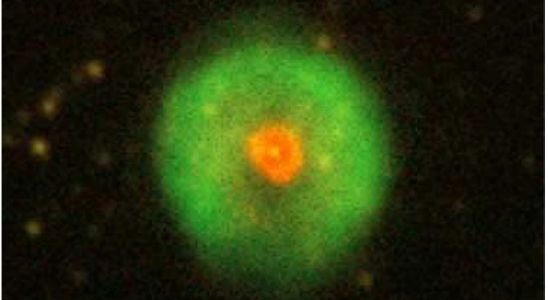 Найден абсолютно новый вид планетарных туманностей