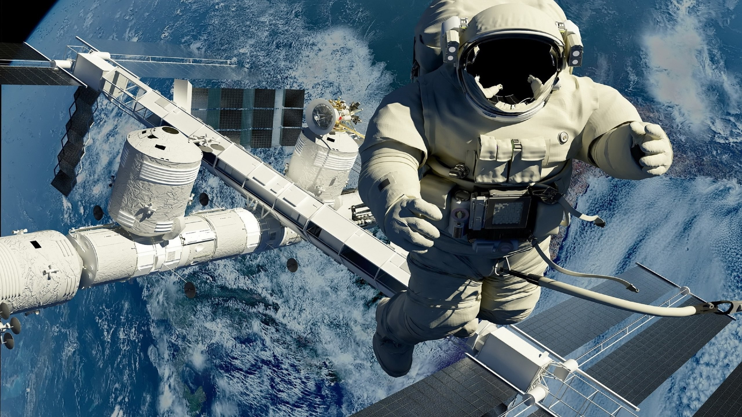 animals in space nasa - HD 2560×1440