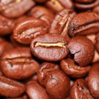 Два ингредиента кофе могут бороться с болезнью Паркинсона и деменцией с тельцами Леви