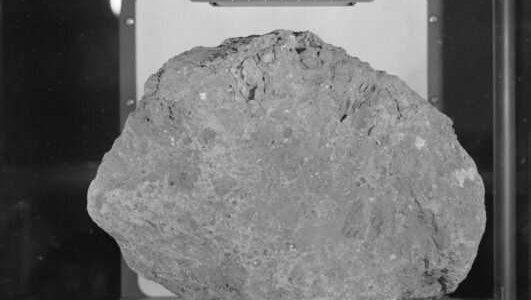 Лунный образец NASA оказался обычным камнем с Земли