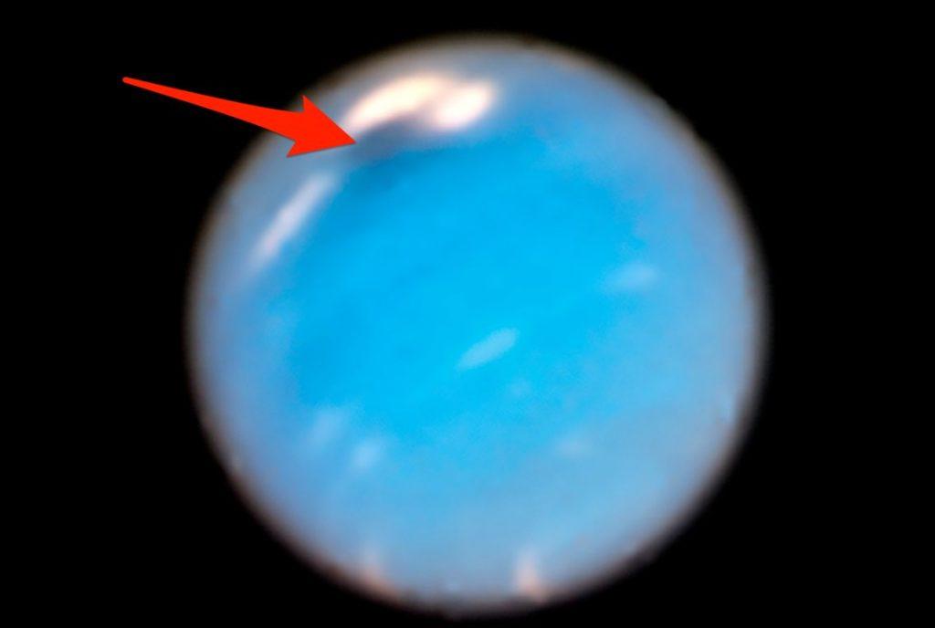 NASA видит «таинственный темный вихрь» на Нептуне