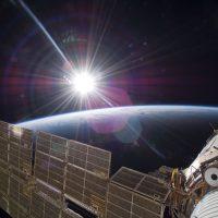 Странные земные организмы как-то выжили за пределами МКС