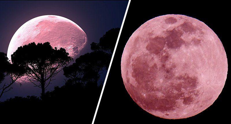 Розовая Луна осветит небо в пятницу
