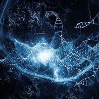 Впервые ДНК была изменена в космосе