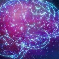 Длительное пребывание в космосе увеличивает объём желудочков головного мозга