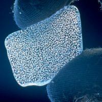 Ученые создали новый вид льда, который наполовину столь же горяч, как Солнце