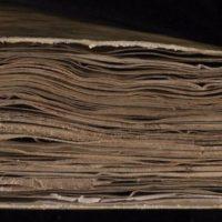 Ученый утверждает, что расшифровал «самую загадочную книгу в мире» всего за 2 недели