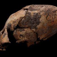 В Китае обнаружены жуткие «ксеноморфные» черепа, датируемые тысячелетиями