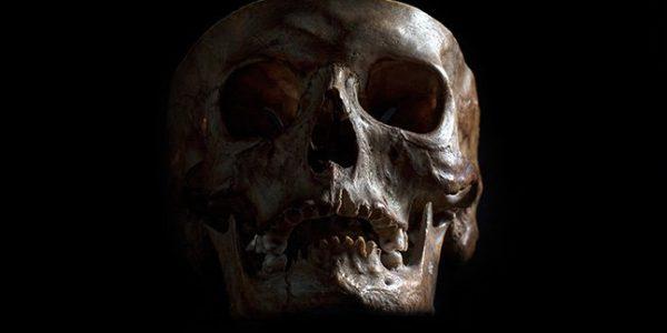 «Призраки» двух неизвестных вымерших видов человека были обнаружены в современной ДНК