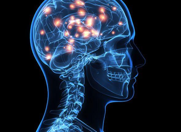 Сознание человека имеет физическую форму — невероятное открытие ученых