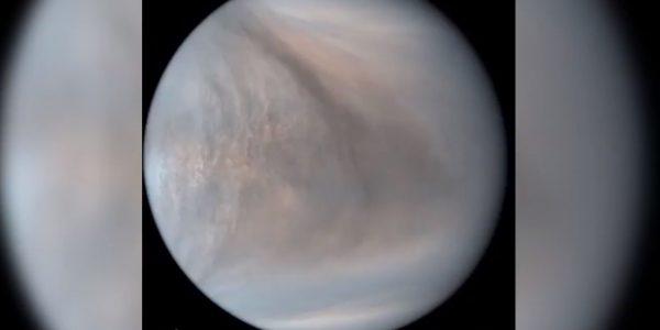 Пятна на Венере: «неизвестные поглотители» - признаки инопланетной жизни?