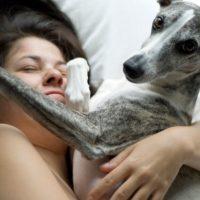 Вот как быстро ваша собака стареет - и нет, старое правило 7 к 1 неверно