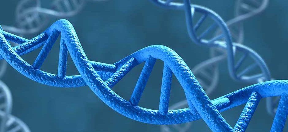 Китай случайно подтвердил, рождение третьего ребенка, с модифицированными генами