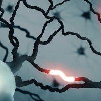 Ученые обнаружили неизвестный ранее тип сигнала, возникающий в мозге человека