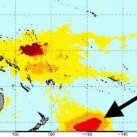 Огромное «пятно» горячей воды угрожает морской жизни Новой Зеландии