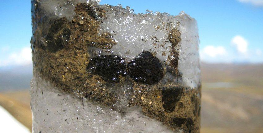 Несколько древних вирусов были обнаружены в 15 000-летнем леднике