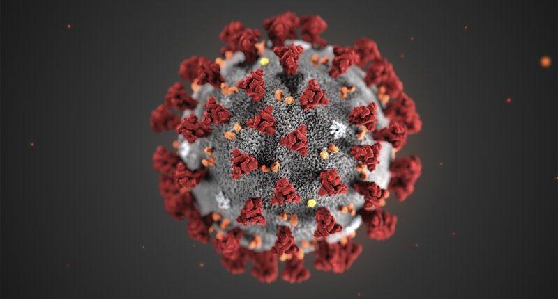 Ученые предупреждают: Китайский коронавирус скоро объявят пандемией