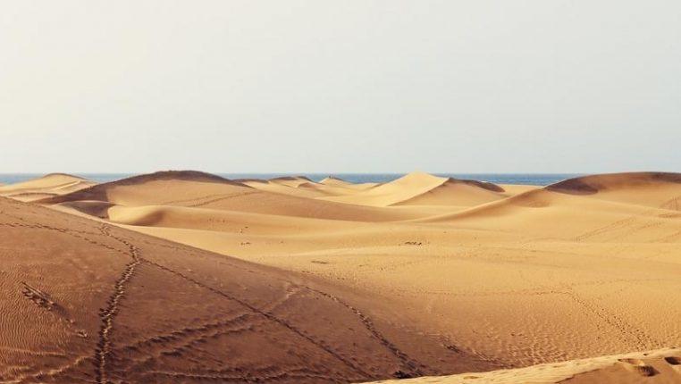 Физики заявляют, что песчаные дюны взаимодействуют и «общаются» друг с другом