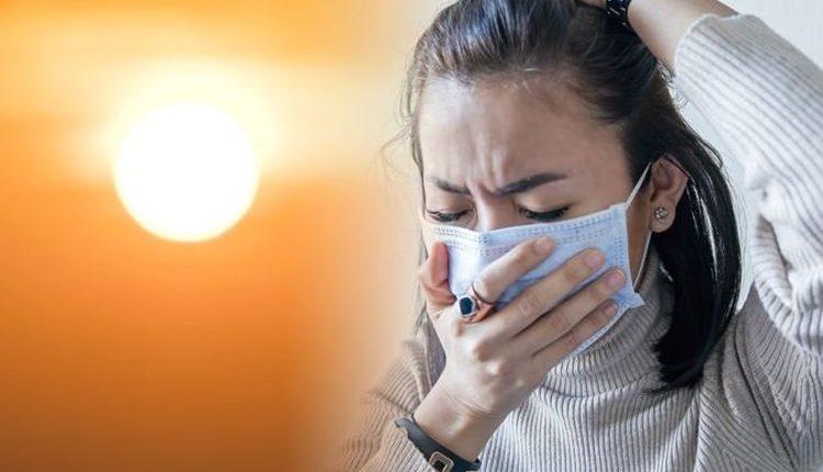 Хорошие новости: теплая погода замедляет распространение коронавируса