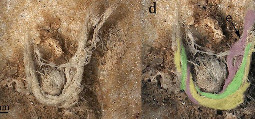 Исследователи обнаружили фрагмент древней веревки, и она была создана не людьми