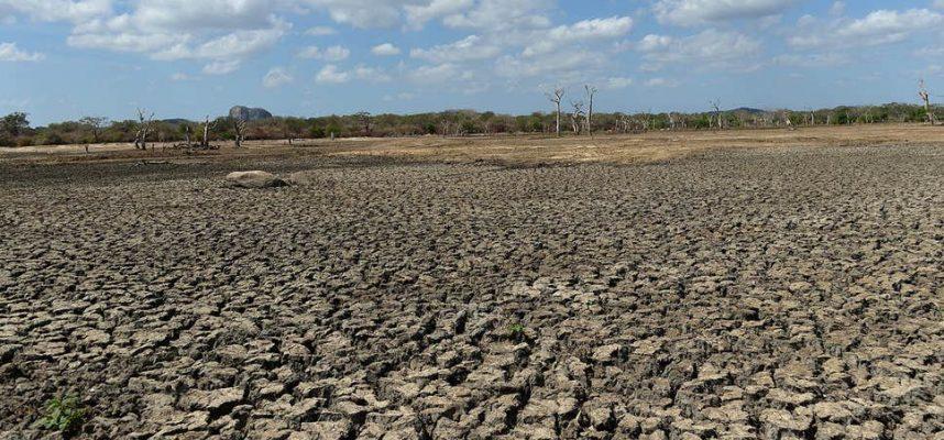 Исследования показывают, что некоторые районы Северной Америки могут стать пустыней