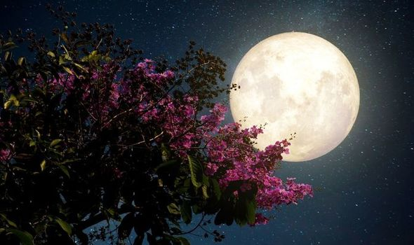 Цветочная Луна в мае: последнее суперлуние в году