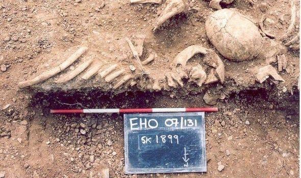Археологи поражены: оспу распространяли викинги