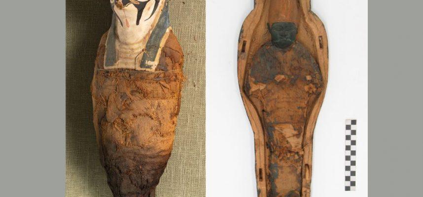 Ученые обнаружили неожиданные находки внутри древнеегипетских мумий