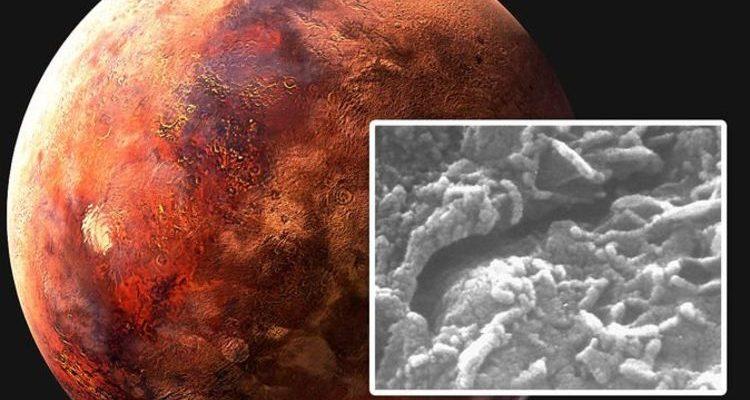 Жизнь на Марсе: ученые подтвердили наличие «червей» в марсианском метеорите