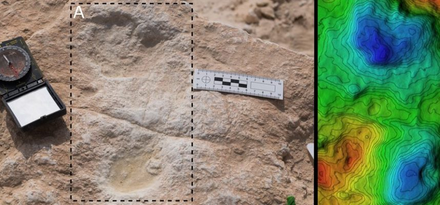 120 000 — летние человеческие следы обнаружены в Саудовской Аравии