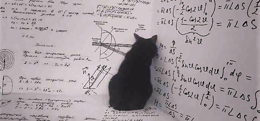Может ли кот Шредингера существовать в реальной жизни? Скоро физики узнают это