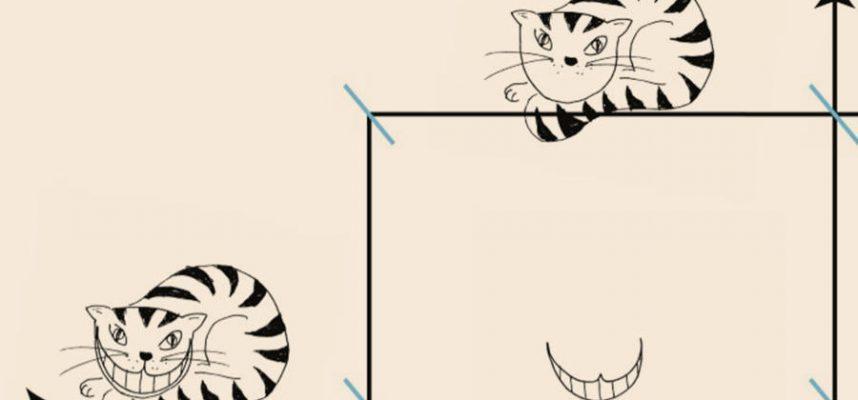 В новой сногсшибательной статье физики дают коту Шредингера чеширскую ухмылку