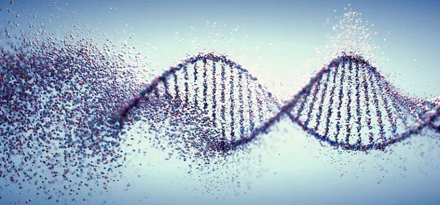 Появляется все больше свидетельств, что жизнь на Земле началась не только с РНК