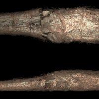 Археологи обнаружили древнюю мумию погребенную в странном коконе
